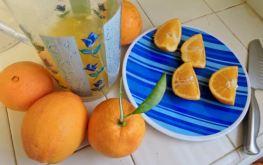 kitchen oranges being squeezed - 1