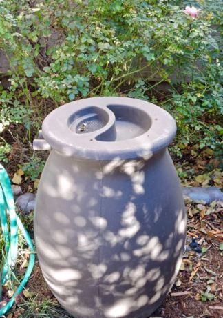 garden sun dappled rain barrel dec 17 - 1